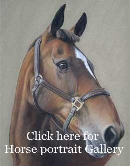Horse portraits in pastel by animal artist, Nina Squire