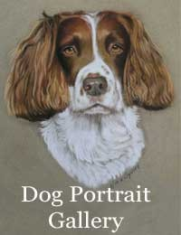 Pet portraits in pastel gallery