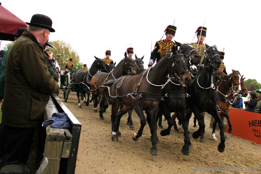 The Troop entering the arena at The Royal Windsor Horse Show