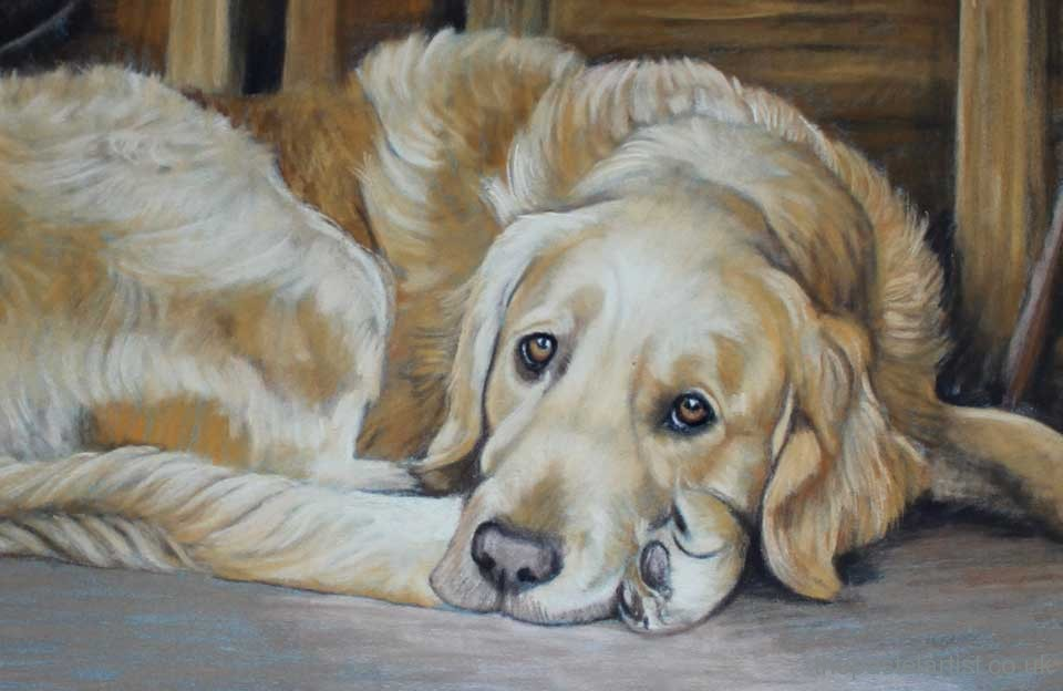 Pet portrait artist in Dorset