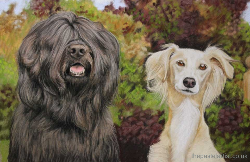 Pet portrait in Dorset by Nina Squire